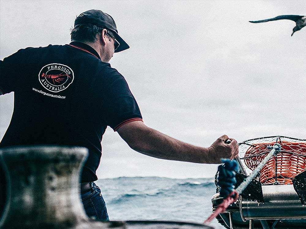 生鲜海鲜水产品牌策划,品牌设计