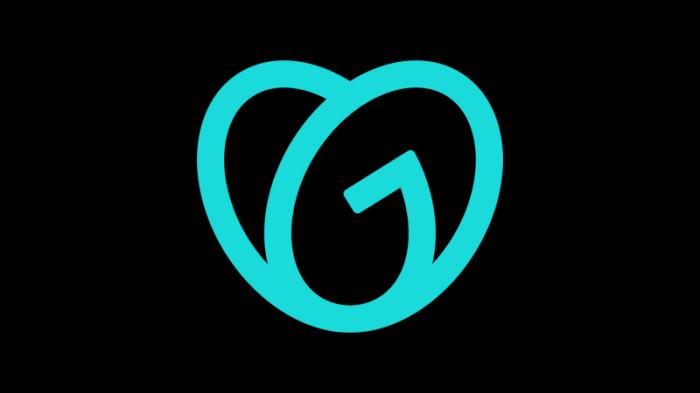 GoDaddy_logo_icon